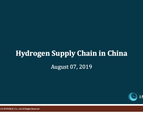 China_Hydrogen_SupplyChain(EN)_sample